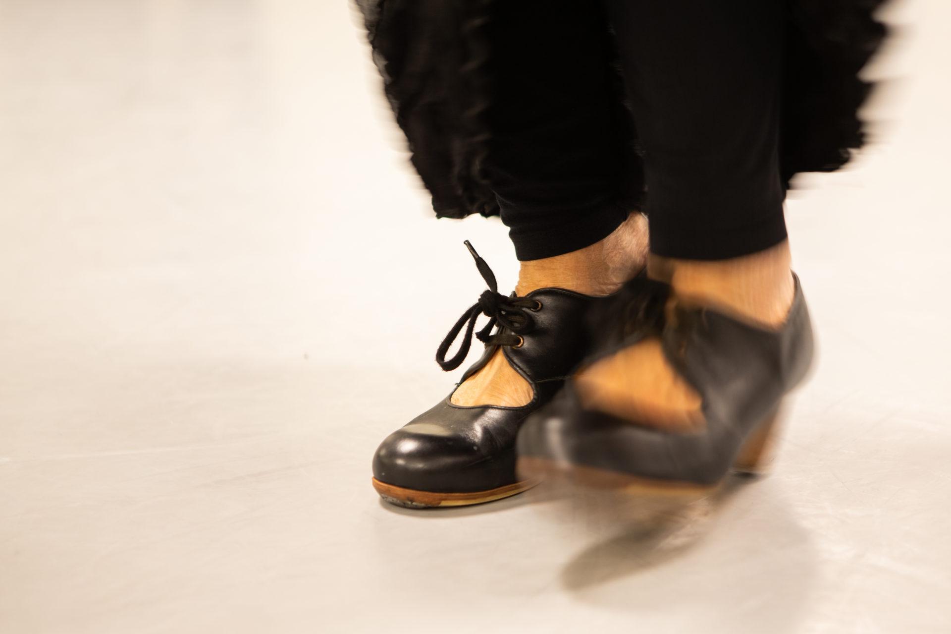 Flamenco 002